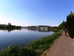 Radwanderer auf dem Mosel Radweg am Moselufer bei Metternich