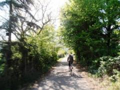 Radwanderer Mosel Radweg zwischen Gärten bei Kobern Gondorf